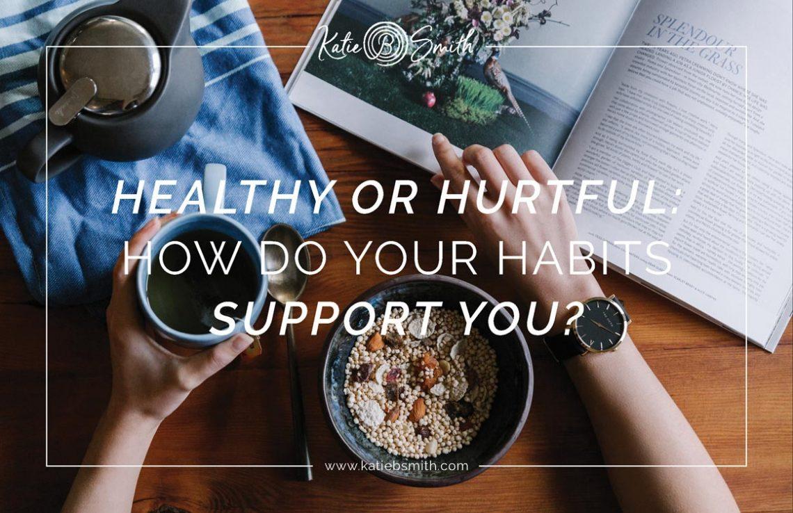 Healthy-or-Hurtful